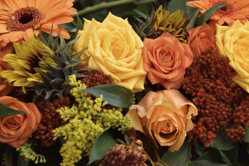 Mapperton autumnal floral edit